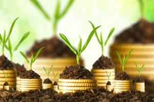 investitii profitabile