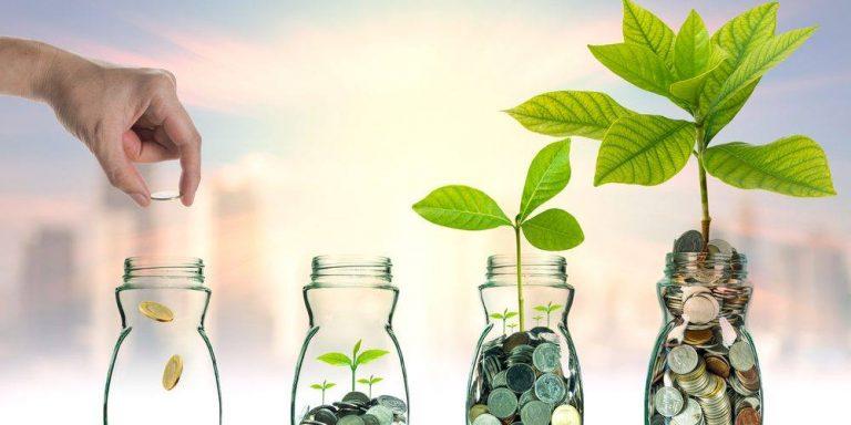 Investitii profitabile cu 100 euro/lună