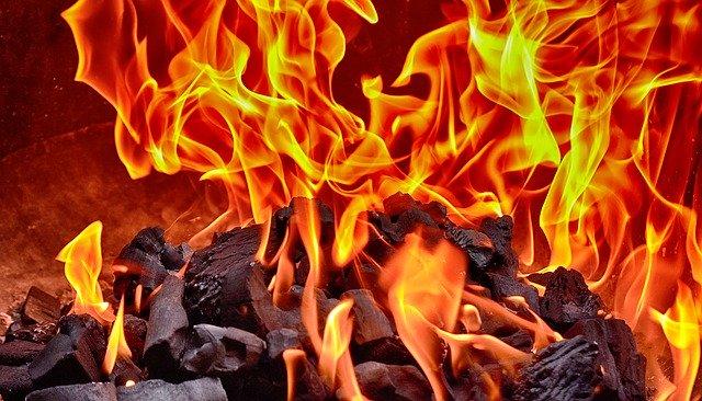 Film gratuit despre FIRE (independenta financiara)