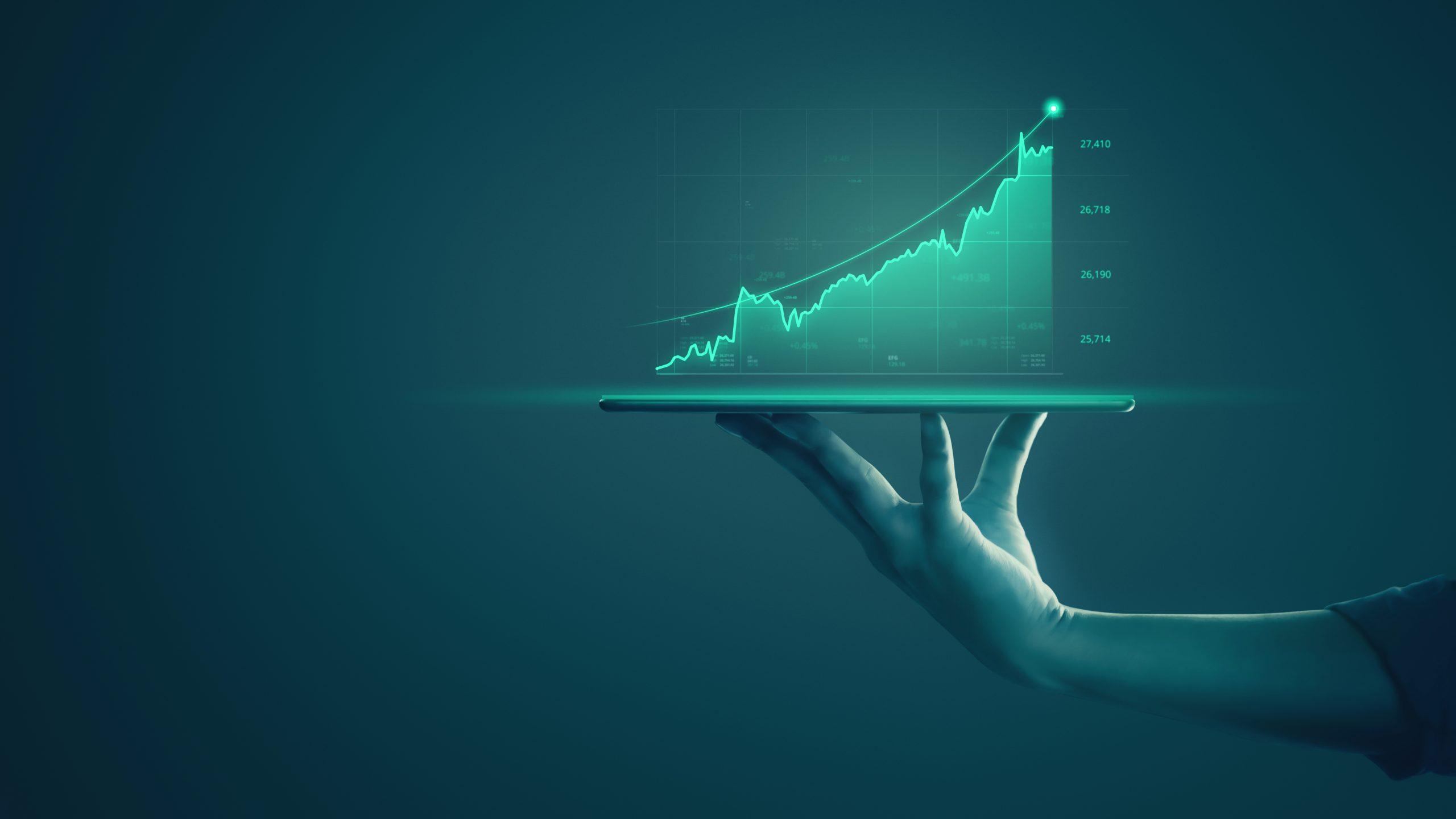 investitii pe termen lung scaled