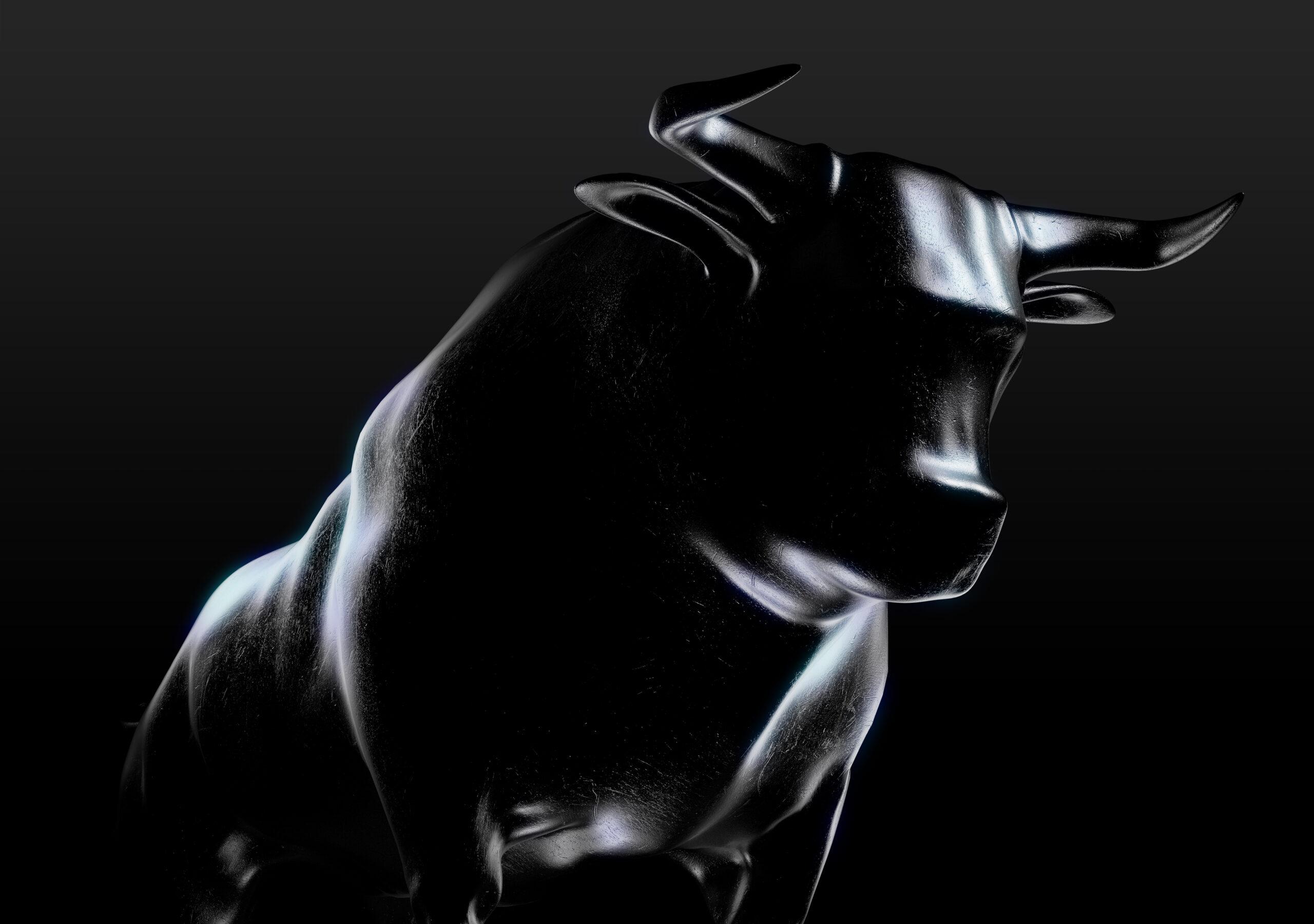 bull scaled